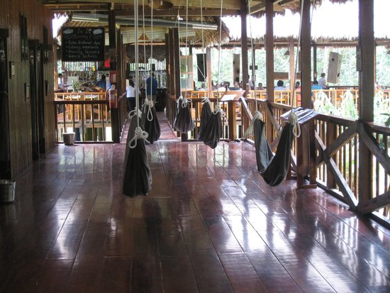 Tambopata Research Center: for the hot afternoons