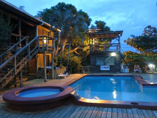 Mango Inn: Swimming pool