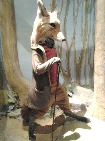 Боунес-он-Уиндермир, UK: A foxy character