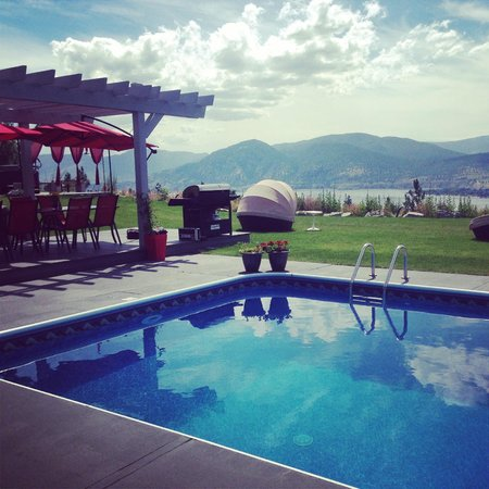 Benchmark B & B: Paradise found - pool and lawn with the famous pods