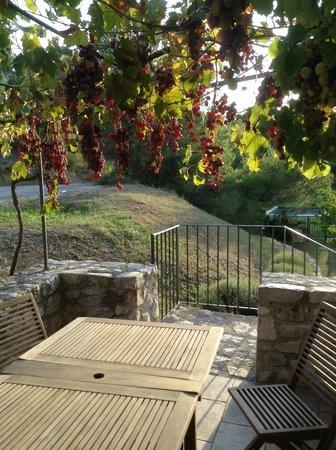 Domaine de Mourchon : Patio of the guest house!
