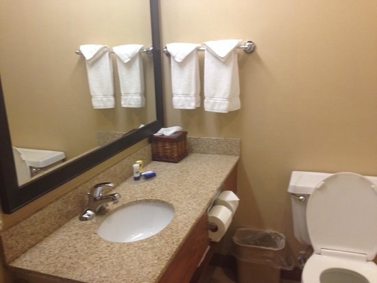 Dakota Sinks : Bathroom, single sink - Picture of BEST WESTERN Vermillion Inn ...