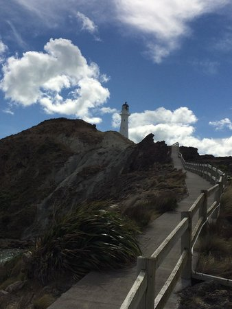 Castlepoint Lighthouse Walk: View up the ramp to the Lighthouse