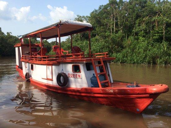 Rimba Orangutan Eco Lodge: Our boat