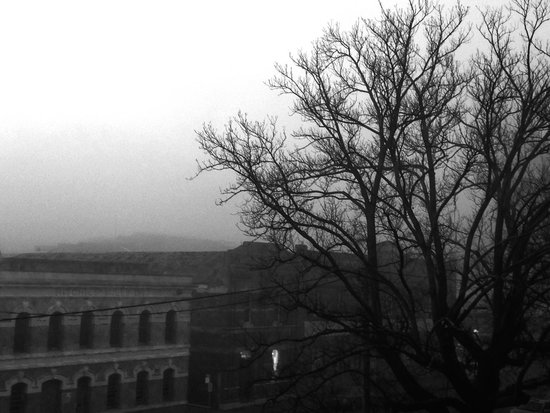 The Sebel Launceston: Early morning fog over Launceston. View from room