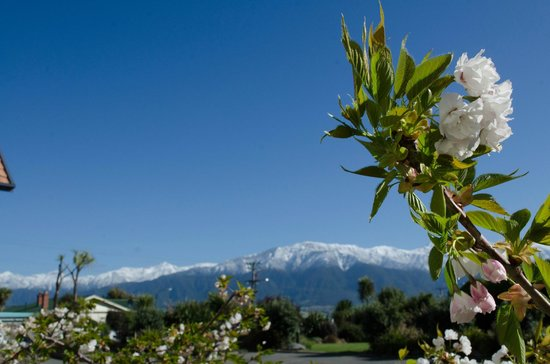 Bella Vista Motel Kaikoura: View from courtyard - exceptional.
