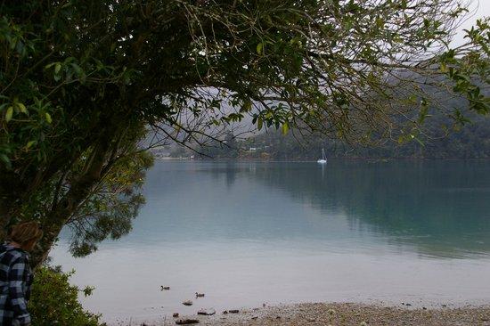 Queen Charlotte Sound : beautiful spot