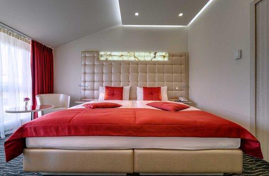 Hotel St. Gotthard: Double Comfort Room