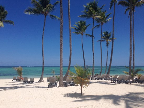 Barcelo Bavaro Palace : View from the rooms and walkways
