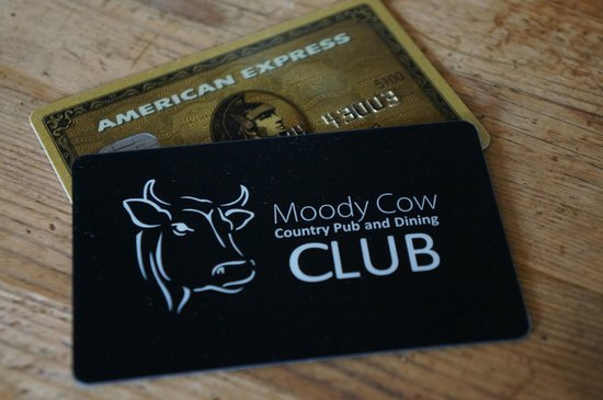 The Moody Cow: Moody Cow Club