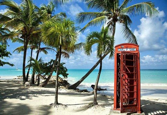 Antigua Village: Пляж