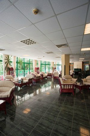 Hotel Zdravets: Lobby