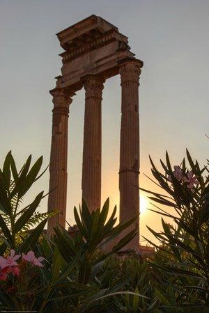 Hotel Dei Borgognoni: Roman Forum under mile away