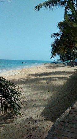 Playa El Portillo : wonderful beach
