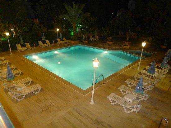 Ekici Hotel: Otelin havuzu