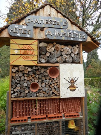 Parc Fenestre: Aménagements pour les insectes