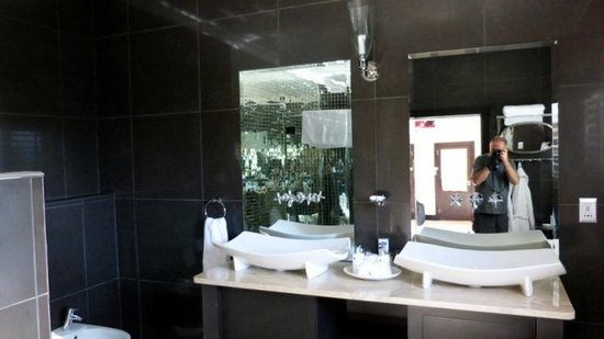 SW1 Lodge: Thandi room basins