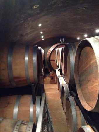 Elk Creek Vineyards: Wine cellar!
