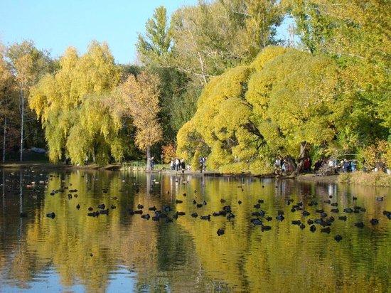 Arboretum Park Exhibition