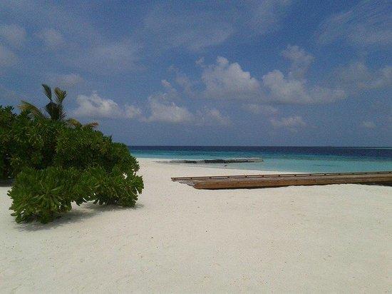 Maafushivaru : lonubo island, ile privée de l'hotel
