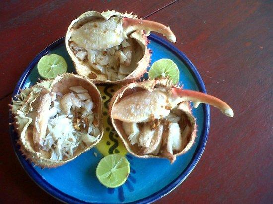 Hotel Puntanorte : Entrada con muelas de cangrejo