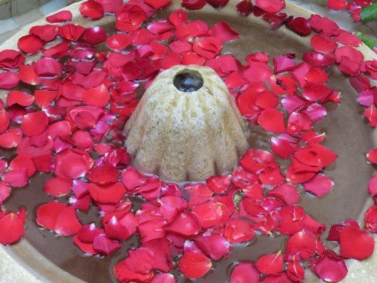 Riad Ma'ab : the lovely fountain