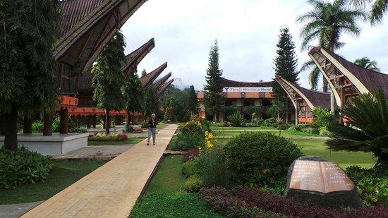 Rantepao Lodge: tuin hotel