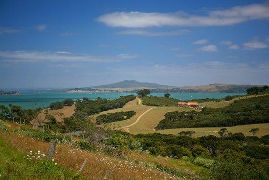 Lavender Hill: вот такой остров
