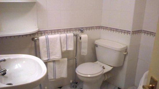 Bredbury Hall Hotel: Side-saddel loo, bind the hot towel rail!