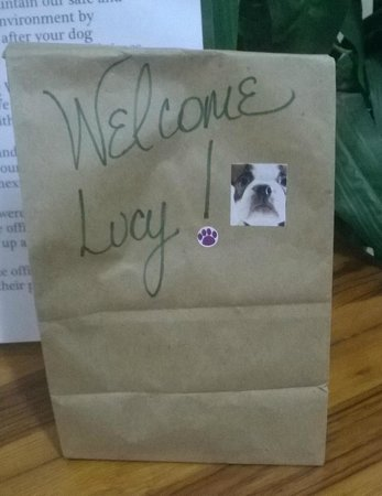 Retreat at Sky Ridge: Welcome Lucy Bag of Milkbones