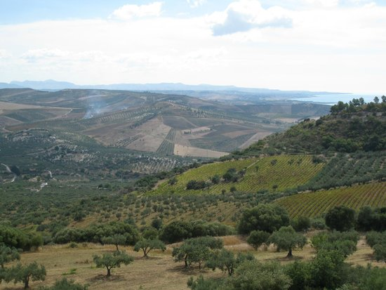 Casale Galati : Across olives and vineyards to the sea
