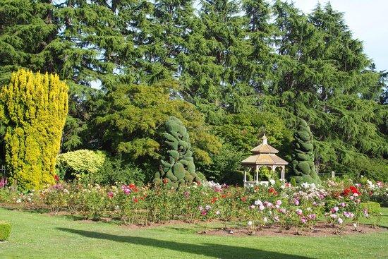 Woodland Park and Rose Garden: Rose Garden a nice place