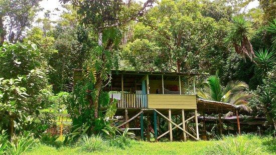 Bolita Hostel : House