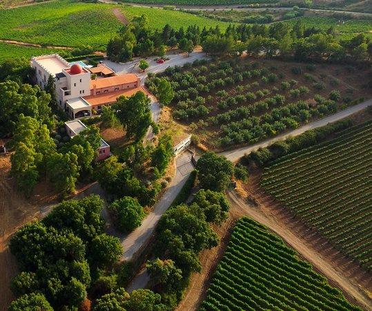 Santa Cristina Gela, Italia: From the sky