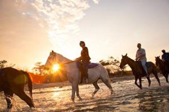 Jamaica: Horseback riding at sunset