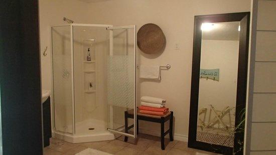 The Calico Cat: shower in ensuite
