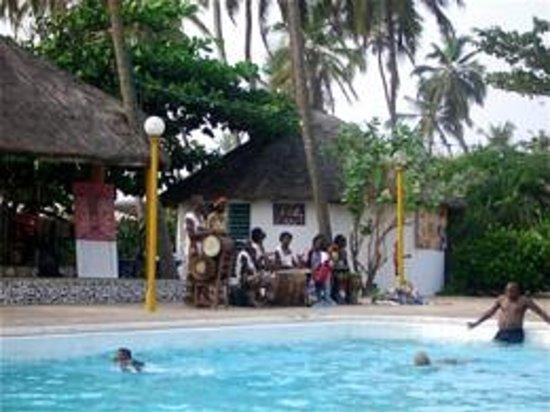Cafe cauris coquillages piscine et musique with coquillage for Coquillage piscine