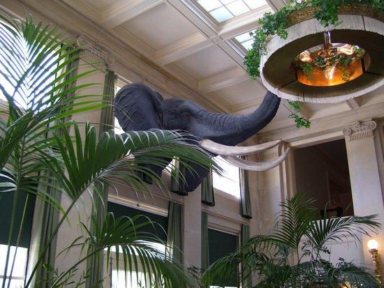 George Eastman Museum: The sitting room