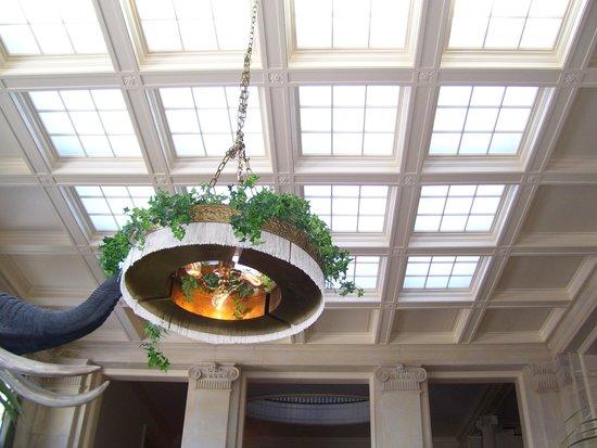 George Eastman Museum: Ceiling skylights