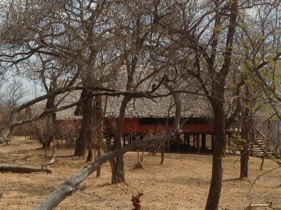 Kikoti Safari Camp: More Views