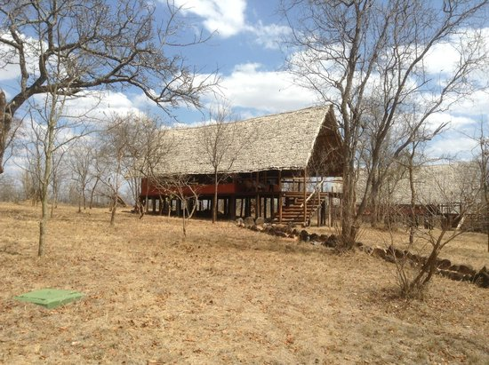 Kikoti Safari Camp: View of Tent from Afar