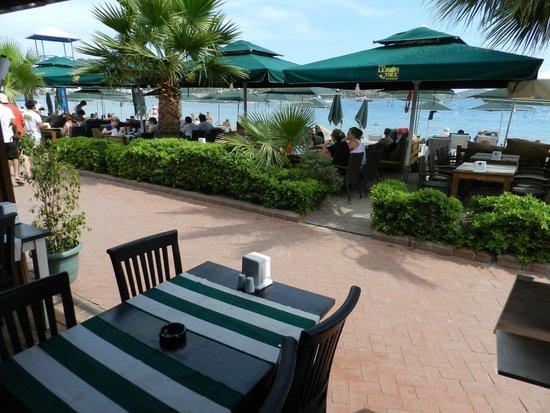 The Lemon Tree Restaurant: Sahili