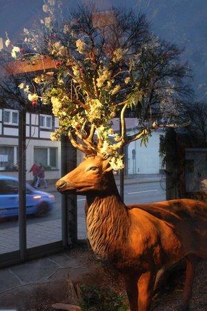 Münchhausen-Museum: Тот самый олень