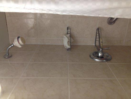 Bristol Plaza Motel: shower tub