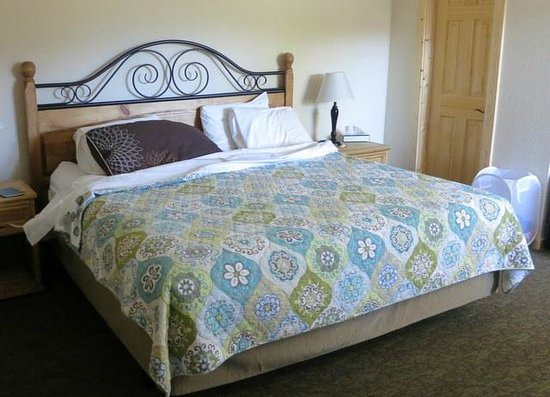 Coyote Mountain Lodge: Comfy Bed