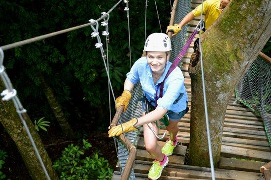 El Santuario Canopy Adventure Tour great day of zip lining in Costa Rica!  sc 1 st  TripAdvisor & great day of zip lining in Costa Rica! - Picture of El Santuario ...
