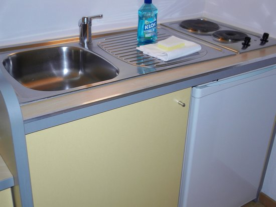 Adagio Access Rennes Centre: Sparkling clean sink and hob