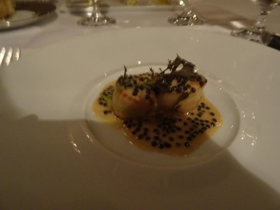 Caviar Russe : One of the courses; divers scallops in a sauce including caviar.