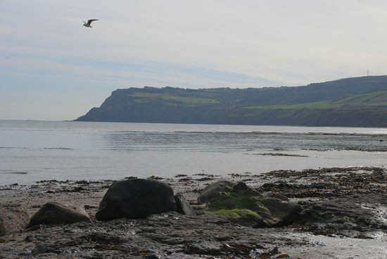Fylingdales United Kingdom  city pictures gallery : ... Hoods Bay Picture of Robin Hood's Bay and Fylingdales Museum, Whitby