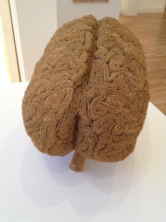 Harwood Museum of Art: Knitted Brain